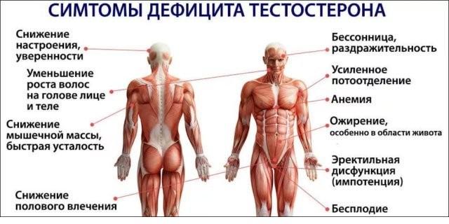 симптомы низкого тестостерона